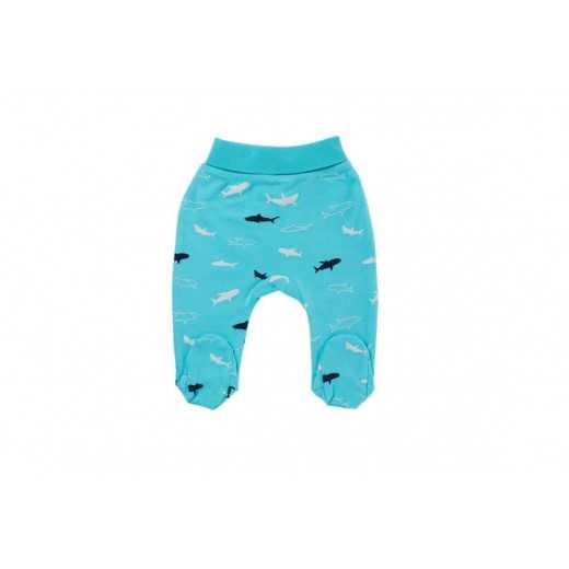 CAN GO kelnės Shark 163